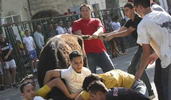 The Bull is grappled to the ground